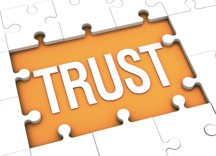 trust puzzle